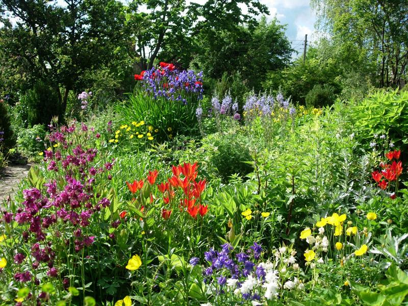 east_lambrook_manor_garden_original.jpg