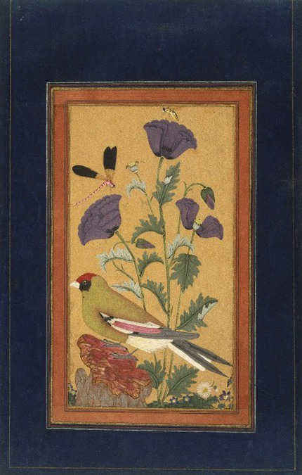 Finch,_Poppies,_Dragonfly,_and_Bee_India_(Deccan,_Golconda).jpg