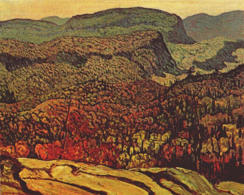 forest-wilderness-1921.jpg