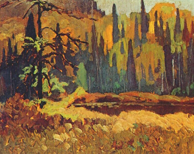 Frank-H-Johnston-Moose-Pond-1918.jpg