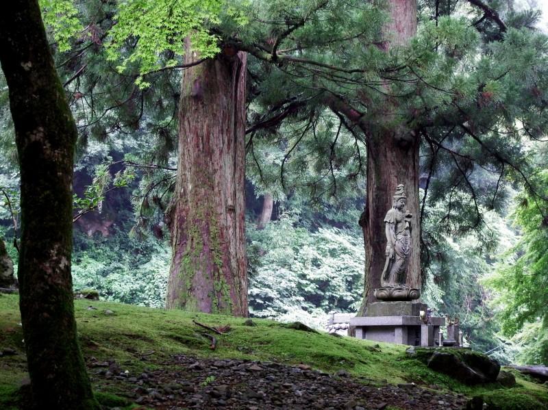 fukui-eiheiji-temple-of-eternal-peace-83440.jpg