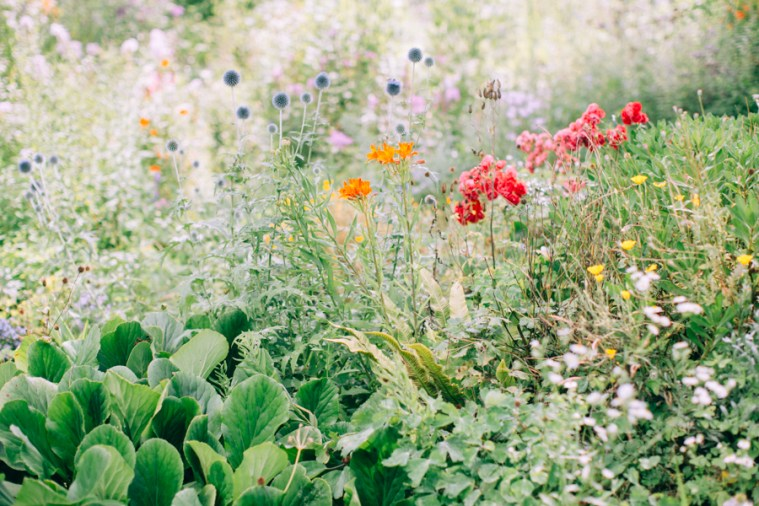 giardino-di-ninfa-1-1.jpg