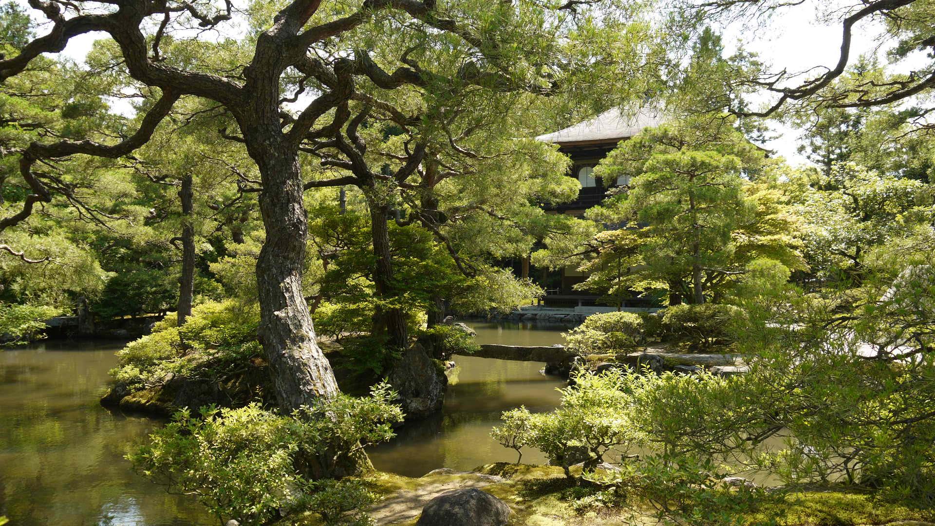 Ginkaku-ji_Temple_慈照寺(銀閣寺)3_-_panoramio.jpg