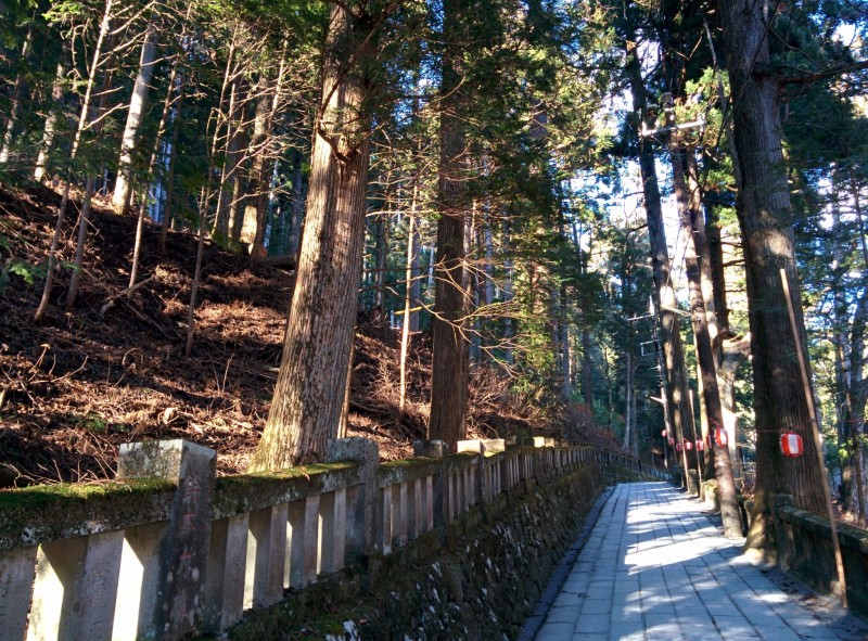 gunma-haruna-shrine-gunma-106799.jpg