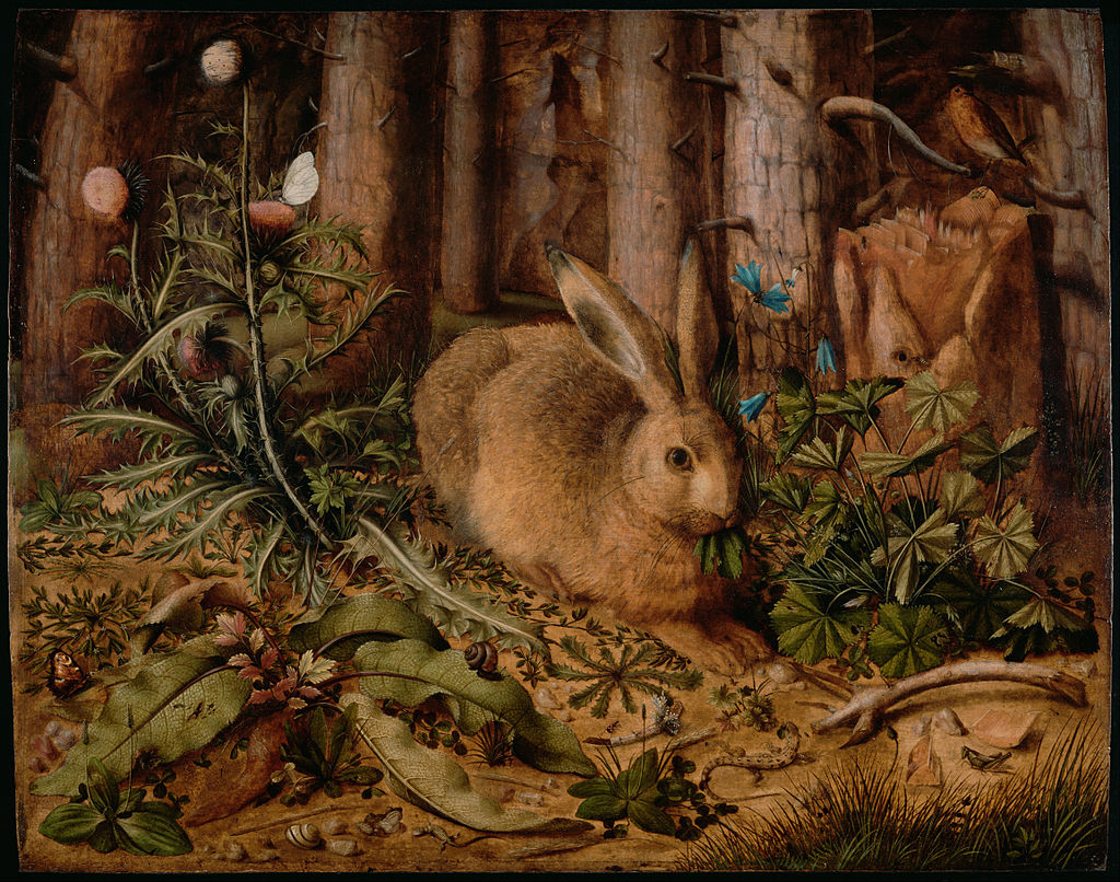 Hans_Hoffmann_(German_-_A_Hare_in_the_Forest_-_Google_Art_Project.jpg