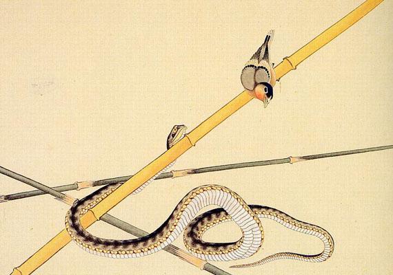 hokusai-katsushika--schlange-und-voeglein-789677.jpg