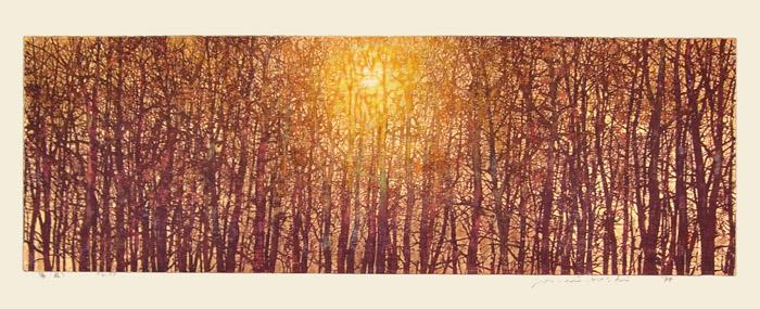 Hoshi, Joichi (1911-1979)440_Hoshi_SunLight_Forest.jpg