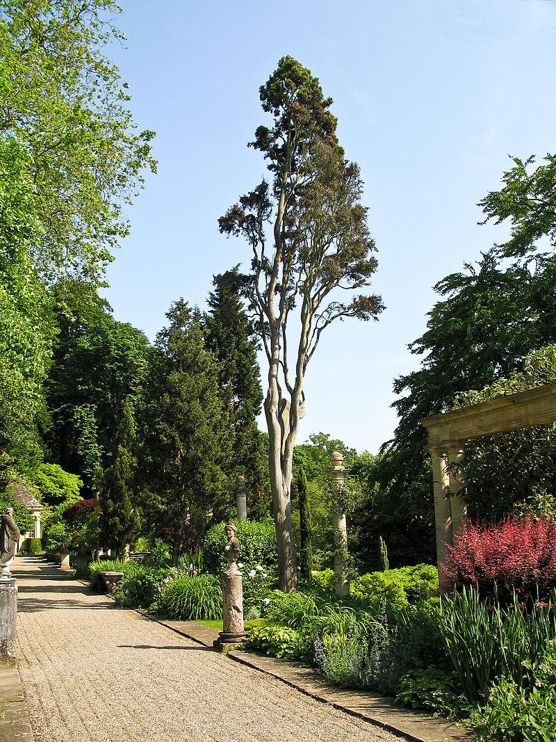 Iford_Manor_-_garden_08.jpg