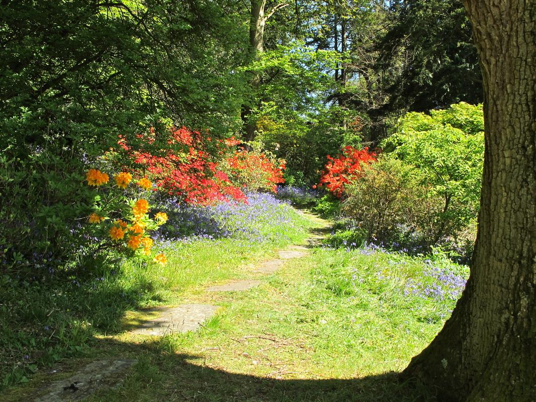 ireland-mount-stewart-gardenа.jpg