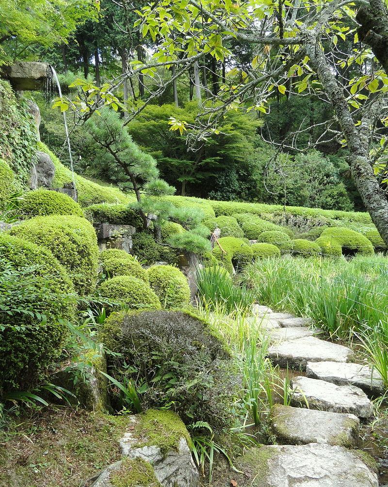 Iris_garden_-_Ishiyamadera_-_Otsu,_Shiga_-_DSC07445.JPG