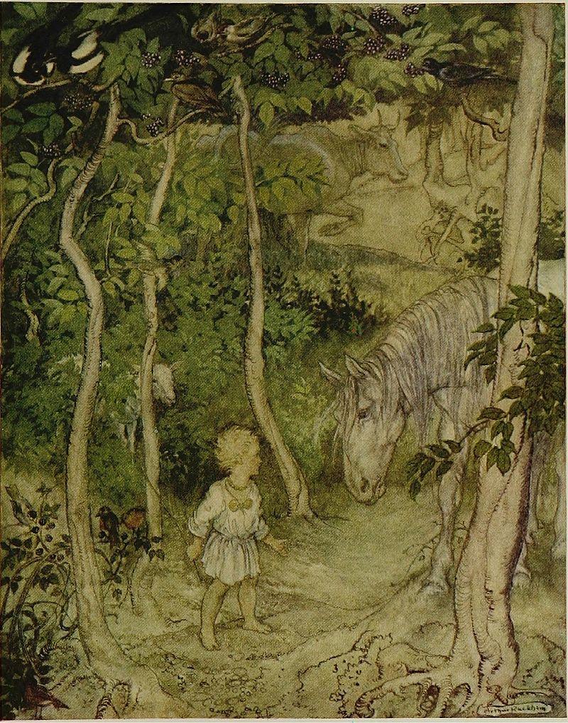 Irish_fairy_tales_(1920)_(14801974193).jpg