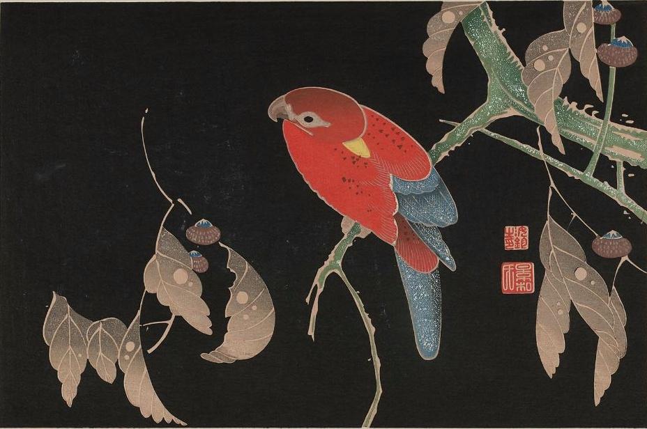 Ishizuri-Jakucho.jpg