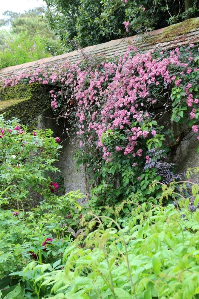 Jardin-bois-Moutiers-10.jpg
