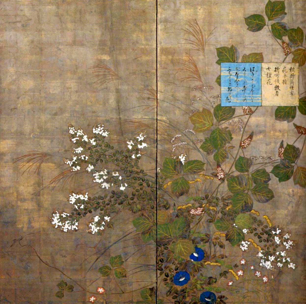 jSuzuki Kiitsu pk00991.jpg
