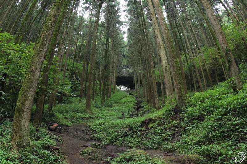 Kamishikimi-Kumanoimasu-Shrine4.jpg