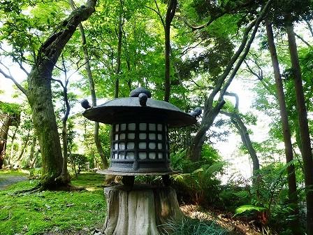 kanagawa_01-034-03.jpg