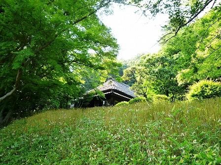 kanagawa_01-034-04.jpg