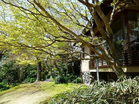 kanagawa_01-049-01.jpg