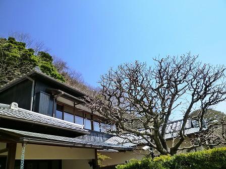 kanagawa_01-049-05.jpg