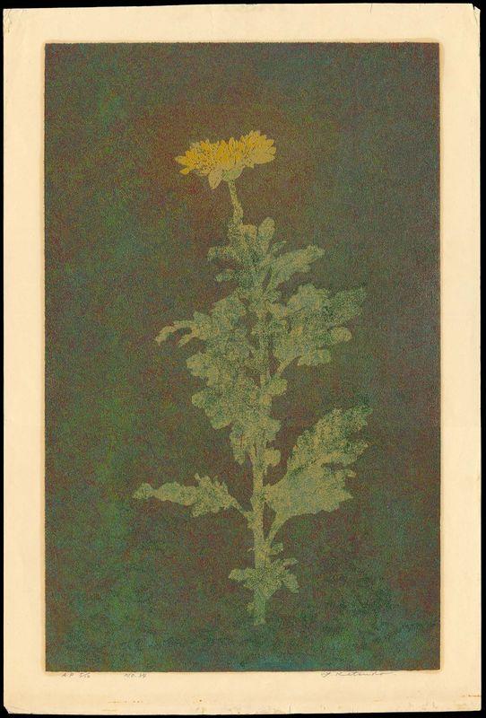 Katsuda_Yukio-77-Number_34_-_Flower-009570-07-20-2008-9570-x800.jpg