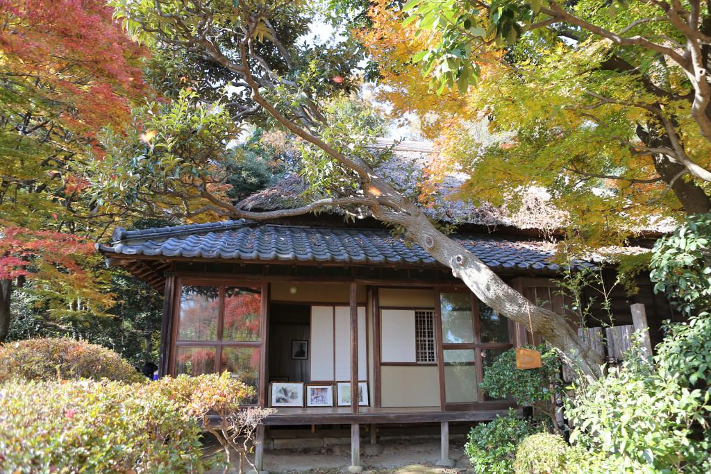 kawai_gyokudo_gashitsu2204.jpg
