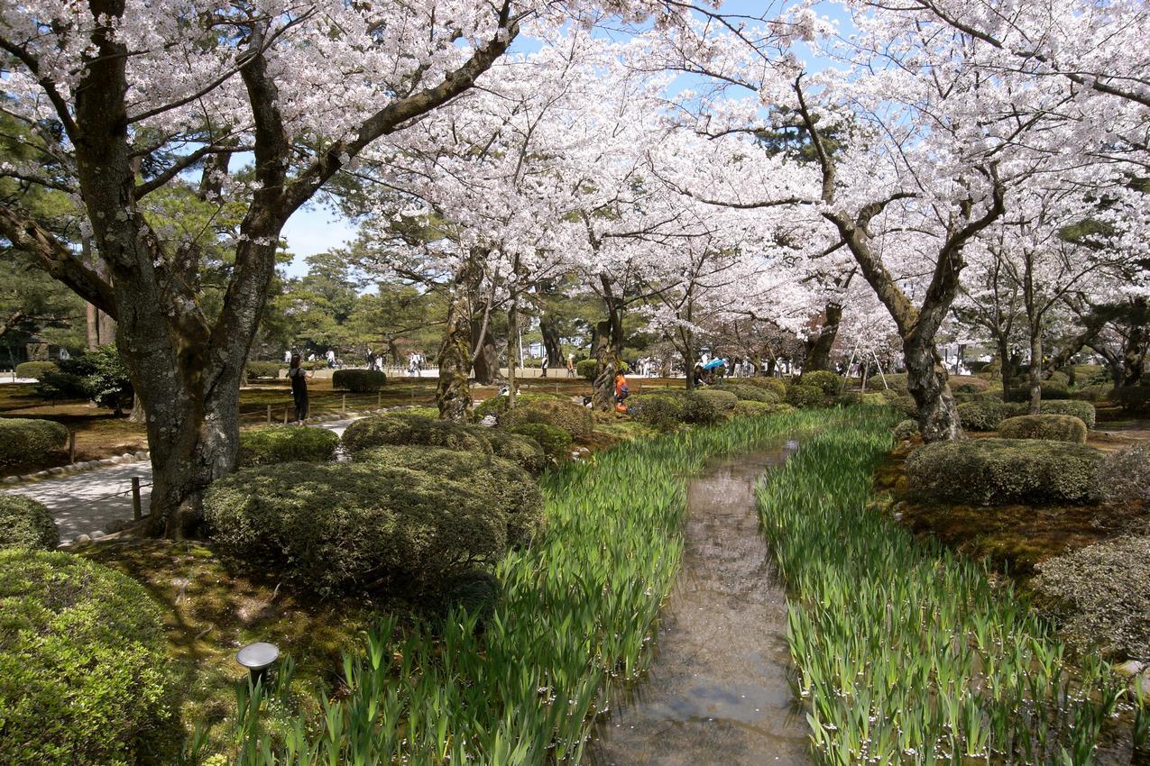 Kenroku-en (79)h.jpg