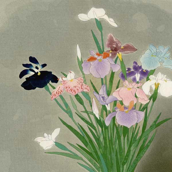Kobayashi_Kokei-No_Series-Irises-00040014-070125-Z00.jpg