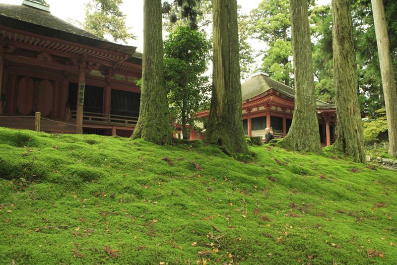 Kokedera Moss Garden Temple 7.jpg