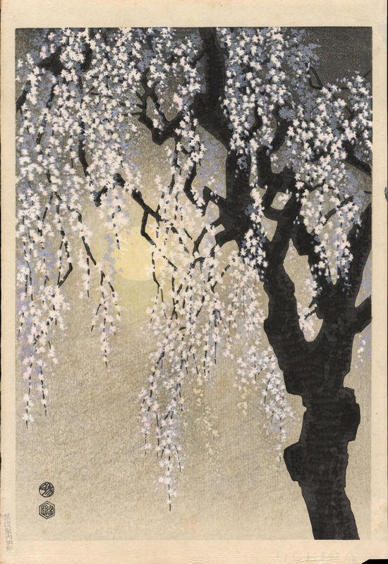 Kotozuka_Eiichi-Drooping_Cherry_Blossoms-009869-01-27-2009-9869-x800.jpg