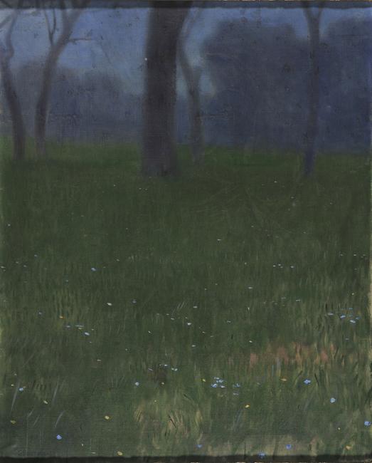 landscape-1903.jpg