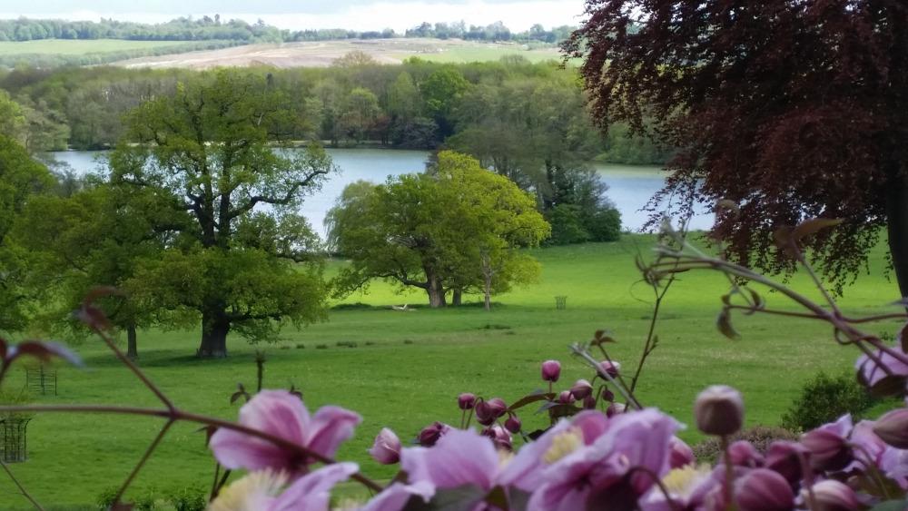 M1-5_view-of-Gatton-Park-with-pink-clematis-landscapeBASSA.jpg