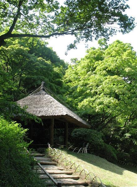 Meiji Jingu Gyoen68_big.jpg