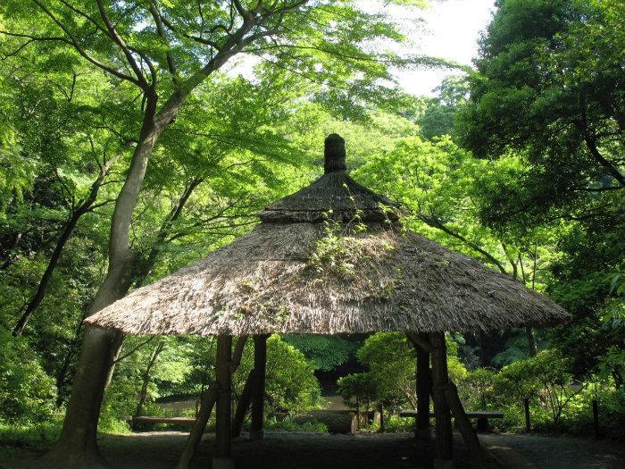 Meiji Jingu Gyoen70_big.jpg