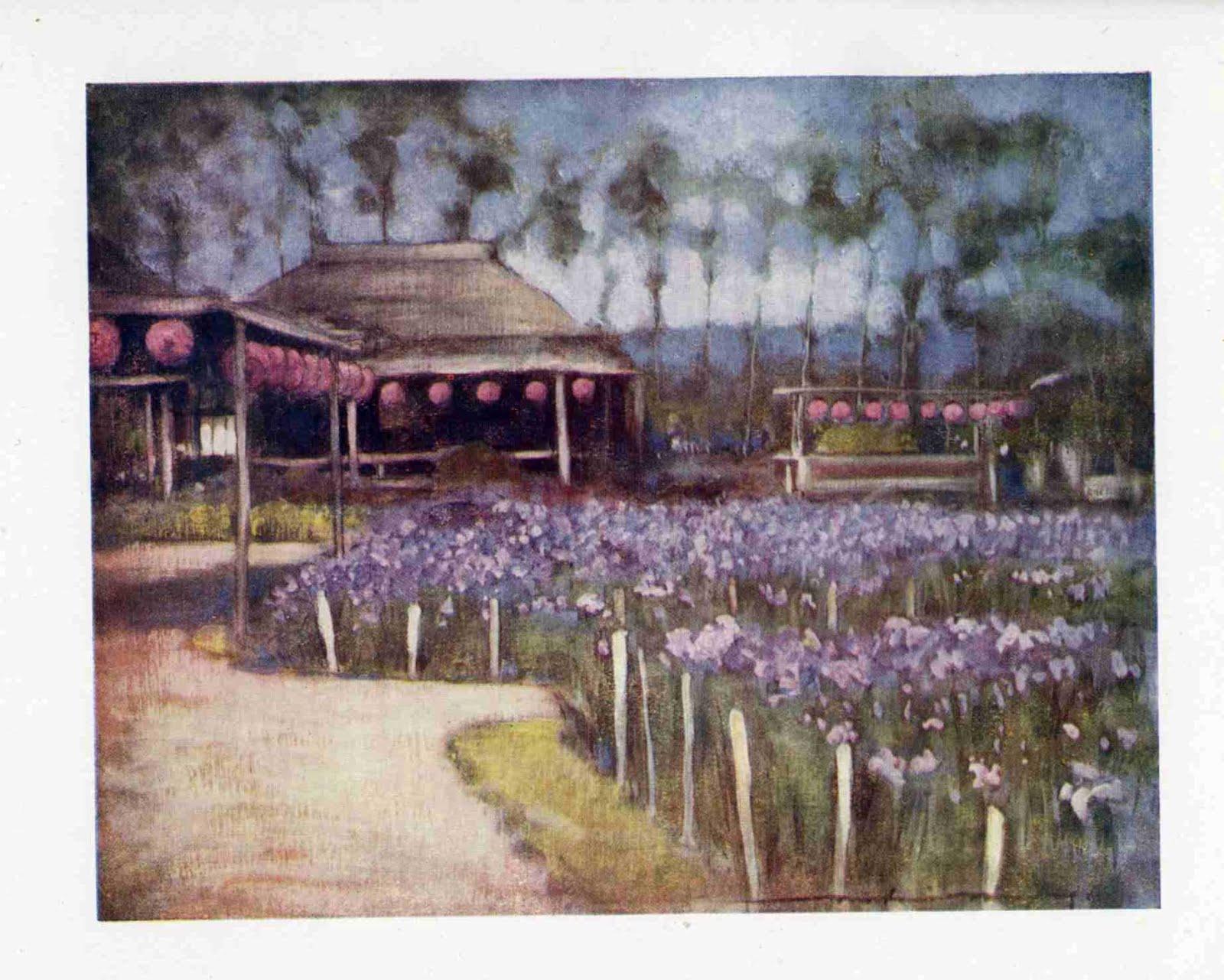 MENPES MortimerIR-menpes-japan-iris-garden-fp112.jpg