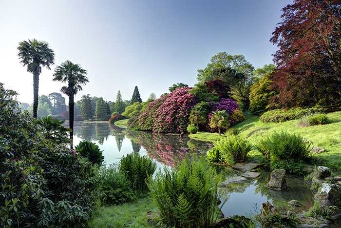 Middle-lake-at-Sheffield-Park.-Credit-NT-Images-John-Miller.jpg