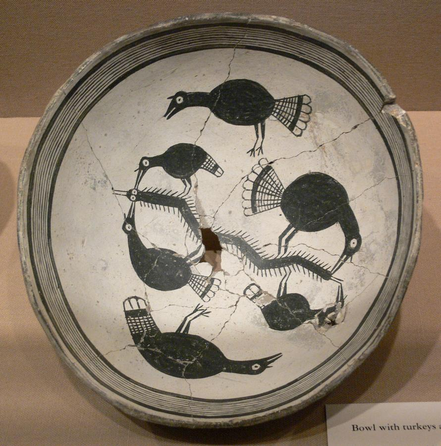Mimbres_Bowl_with_turkeys_and_centipede_DMA_1988-99-FA.jpg