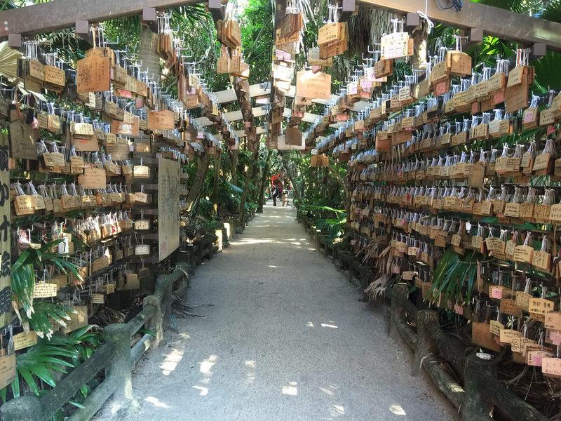 miyazaki-aoshima-jinja-shrine.jpg
