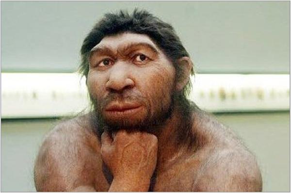 neandertalec1.png