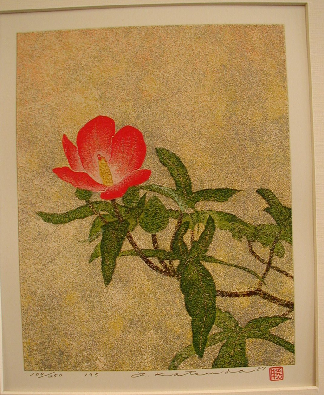 No. 195 Benibana Wata (Red Flower Cotton). '84.JPG