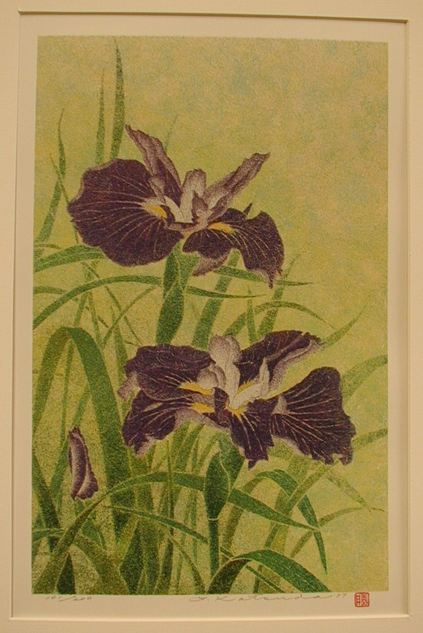No. 205-Irises..JPG