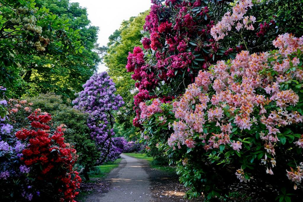 nt-sheringham-park-005-1024x683.jpg