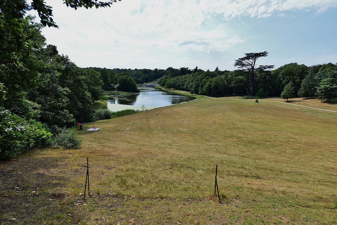 Painshill_Park_View_from_the_Gothic_Temple.JPG