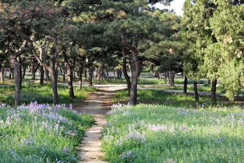 Park-v-Hrame-Neba-e1367834275897.jpg