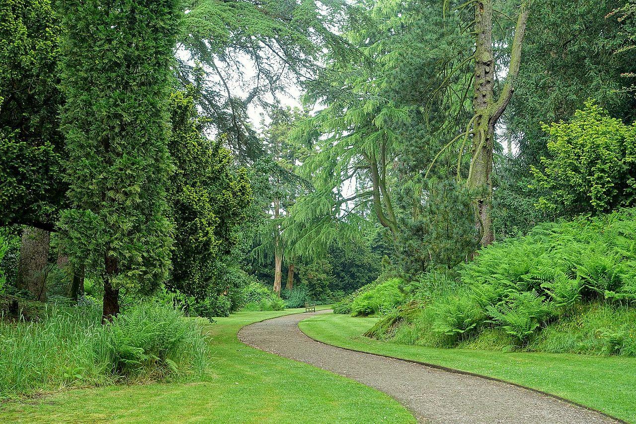 Pinetum_-_Biddulph_Grange_Garden_-_Staffordshire,_England_-_DSC09175 (1).jpg