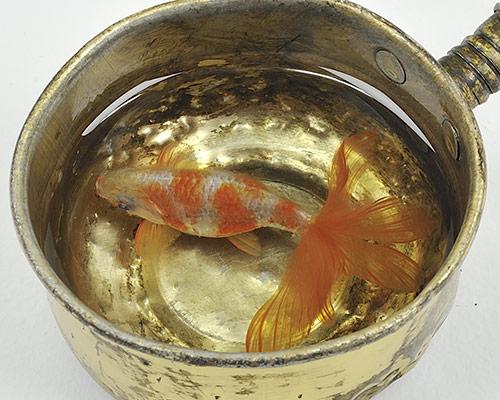 riusuke-fukahori-goldfish-at-joshua-liner-gallery-designboom-500.jpg
