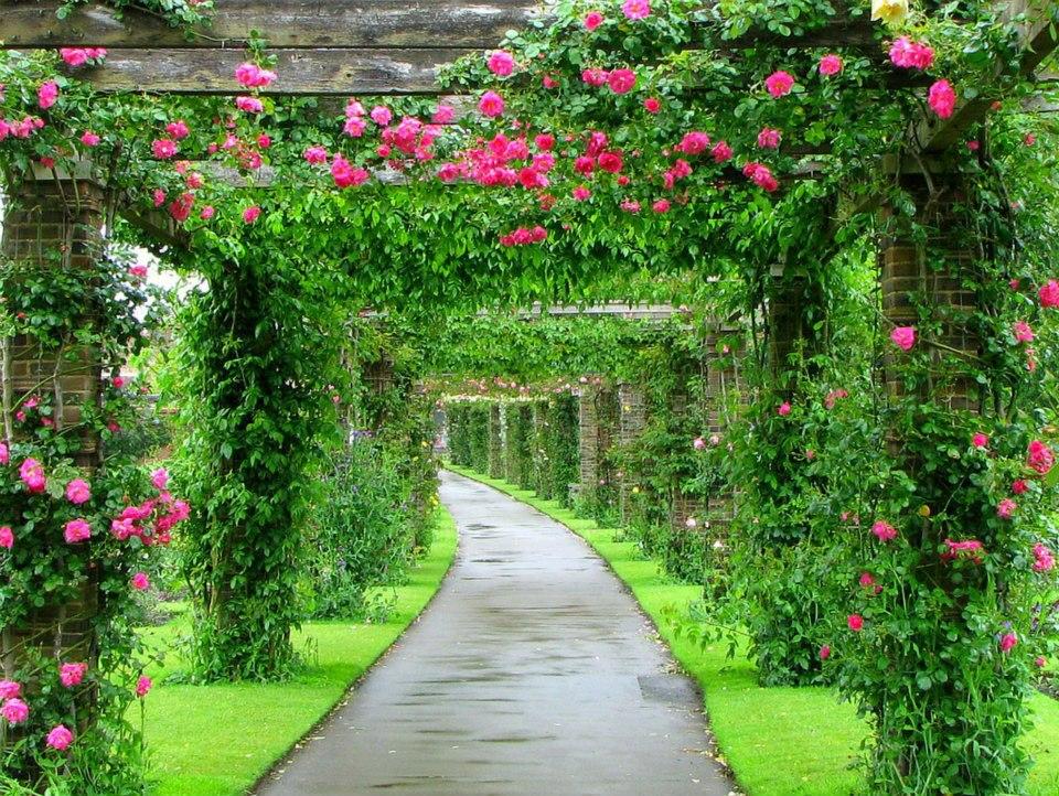 rock-garden-leonardslee-gardens-england-nature-talk_270528.jpg