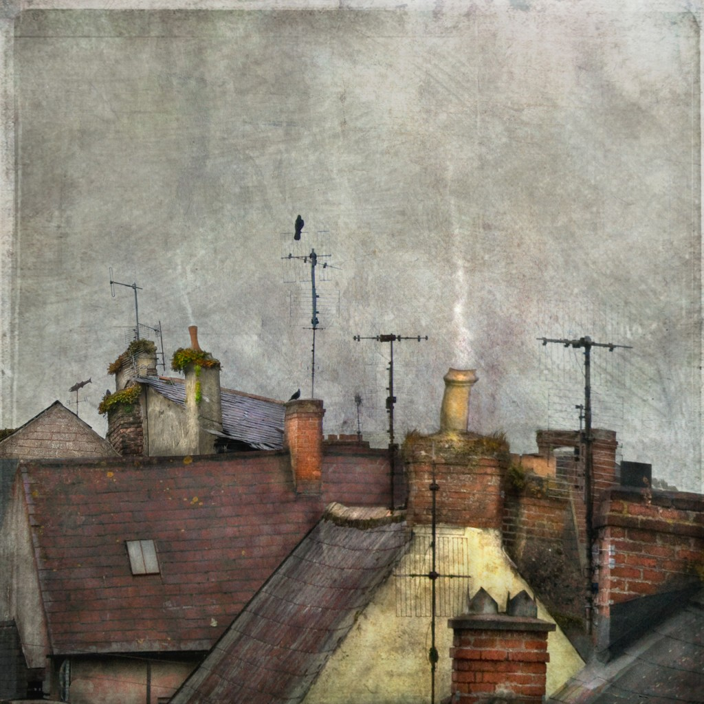 rooftop-inspiration-2-while-you-were-sleeping1-1024x1024.jpg