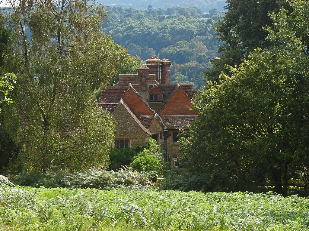 Rooftops_from_Chinthurst_Hill,_Surrey-geograph-4149447-by-Alan-Hunt.jpg