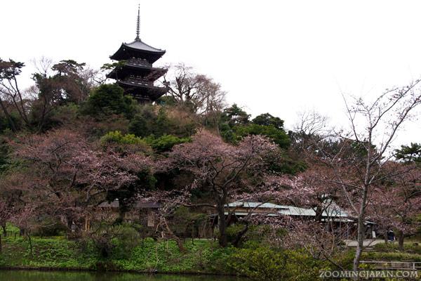 sankeien-garden_38.jpg
