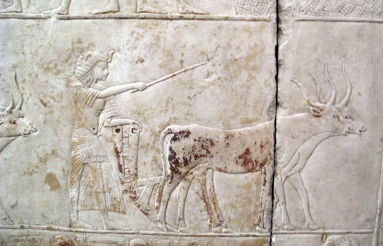 Saqqara,_rilievo_di_horemheb,_1332-1323_ac.,_A_02.JPG